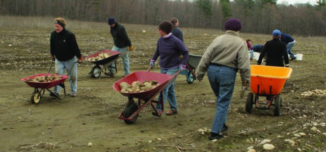 Fieldstone Removal Volunteers