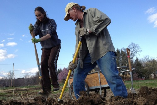 Organic gardening for the community