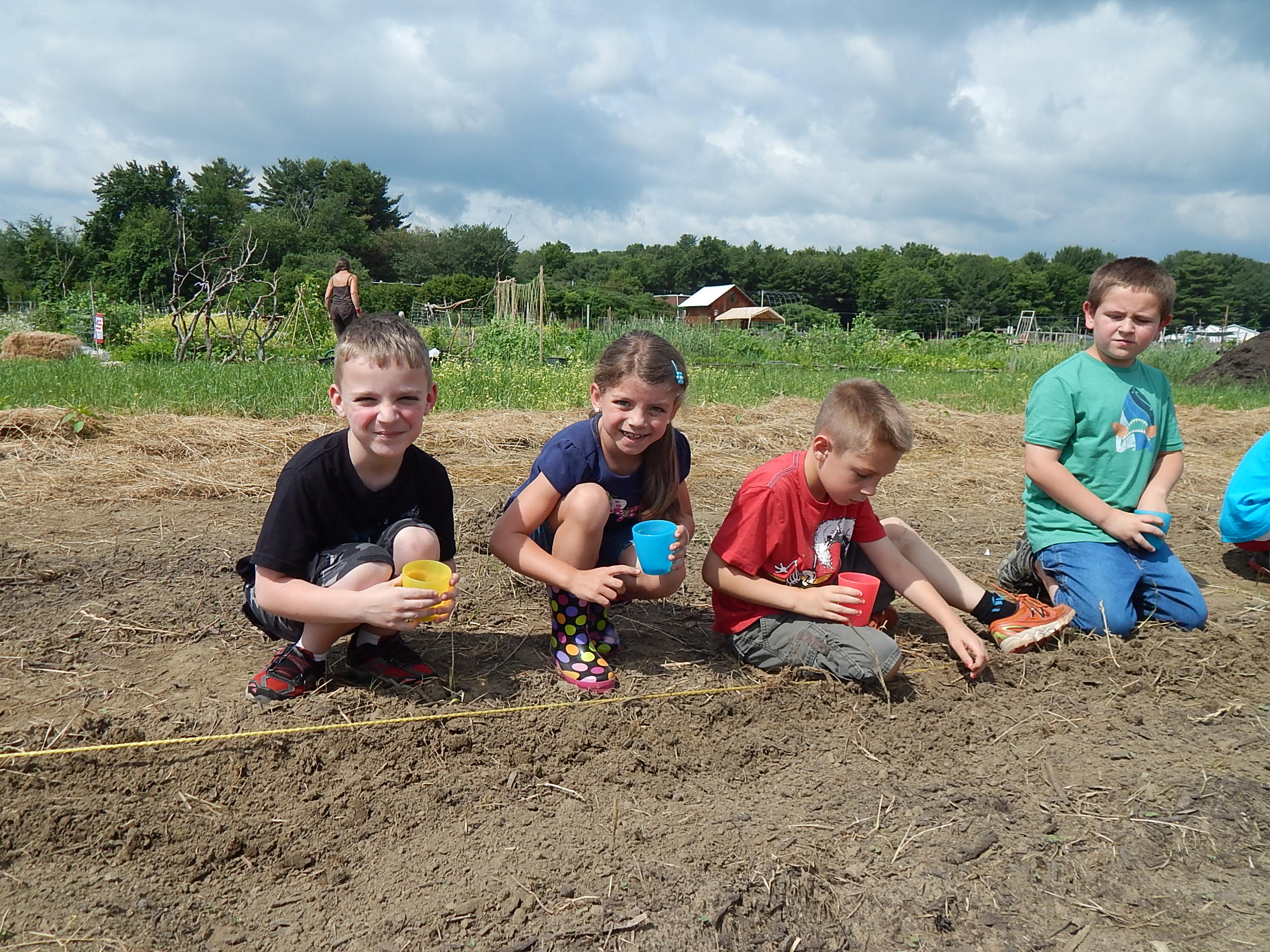 First Graders Plant Beets In Our Giving Garden, June 2015.