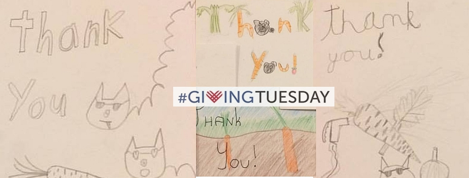 Thanks For #GivingTuesday Support!