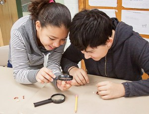 Two kids with a magnifying glass, examining a bean