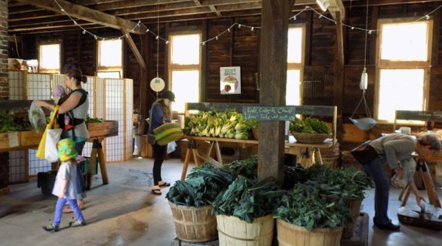 People Picking Up Produce In A Barn