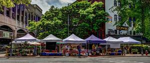 Street view of six of the farm stands at the Tuesday Market.