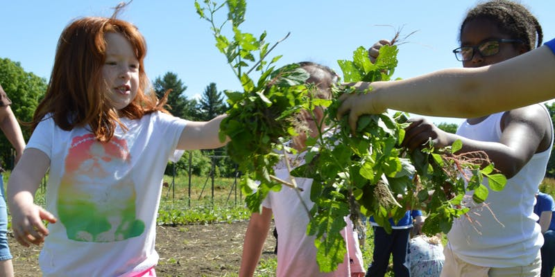 Northampton Farm To School Summit- April 6, 2019